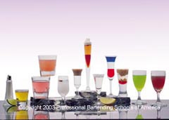 Learn how to professionally prepare over 125 drinks at the the Professional Bartending School.